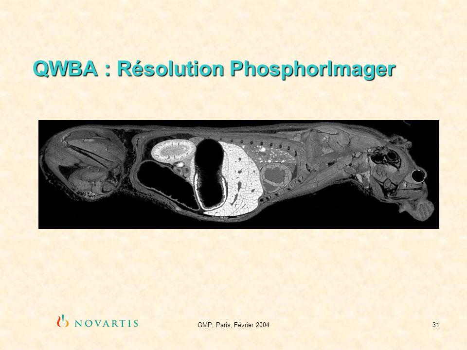 GMP, Paris, Février 200431 QWBA : Résolution PhosphorImager