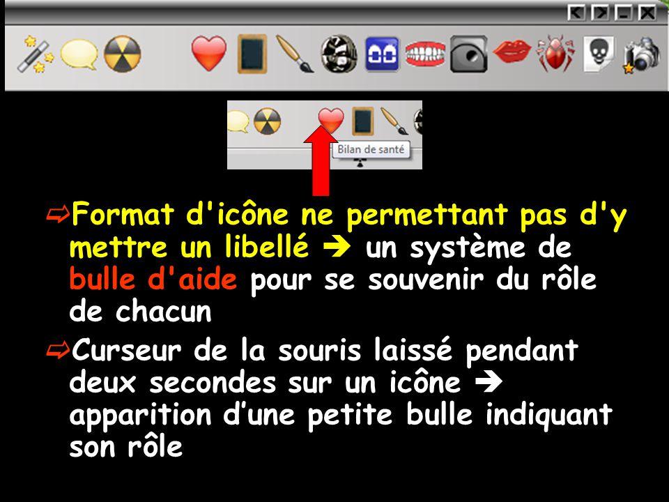 Format d icône ne permettant pas d y mettre un libellé un système de bulle d aide pour se souvenir du rôle de chacun Curseur de la souris laissé pendant deux secondes sur un icône apparition dune petite bulle indiquant son rôle