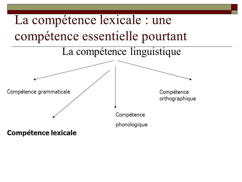 La compétence lexicale : une compétence essentielle pourtant La compétence linguistique Compétence phonologique Compétence orthographique Compétence g