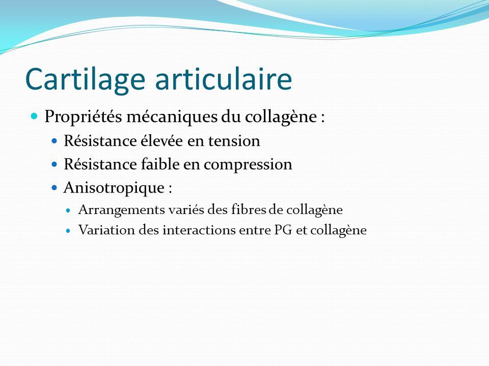 Cartilage articulaire Propriétés mécaniques du collagène : Résistance élevée en tension Résistance faible en compression Anisotropique : Arrangements