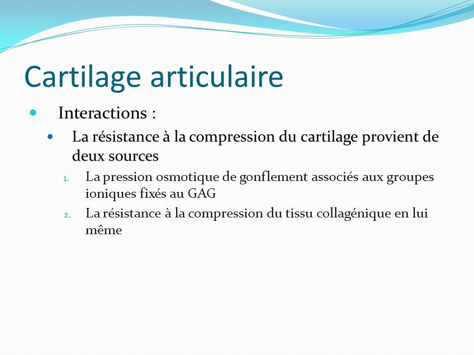 Cartilage articulaire Interactions : La résistance à la compression du cartilage provient de deux sources 1. La pression osmotique de gonflement assoc