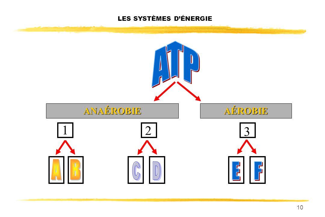 9 ASCENSEUR LES SYSTÈMES DÉNERGIE CARBURANTS (système dénergie) ÉNERGIE THERMIQUE / ÉNERGIE MÉCANIQUE NUTRIMENTS + CASCADE = HYDROLYSE