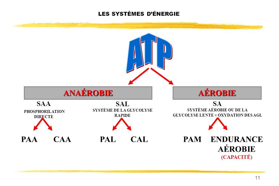 10 LES SYSTÈMES DÉNERGIE 2 1 3 ANAÉROBIEAÉROBIE