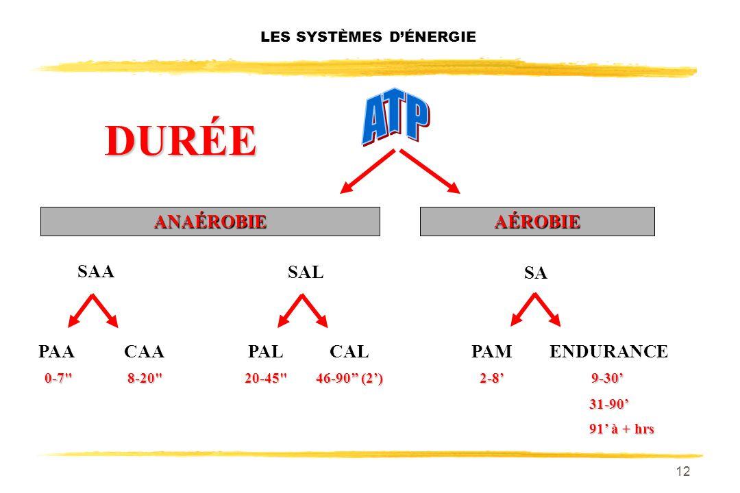 11 LES SYSTÈMES DÉNERGIE SAL SYSTÈME DE LA GLYCOLYSE RAPIDE SAA PHOSPHORILATION DIRECTE SA SYSTÈME AÉROBIE OU DE LA GLYCOLYSE LENTE + OXYDATION DES AG