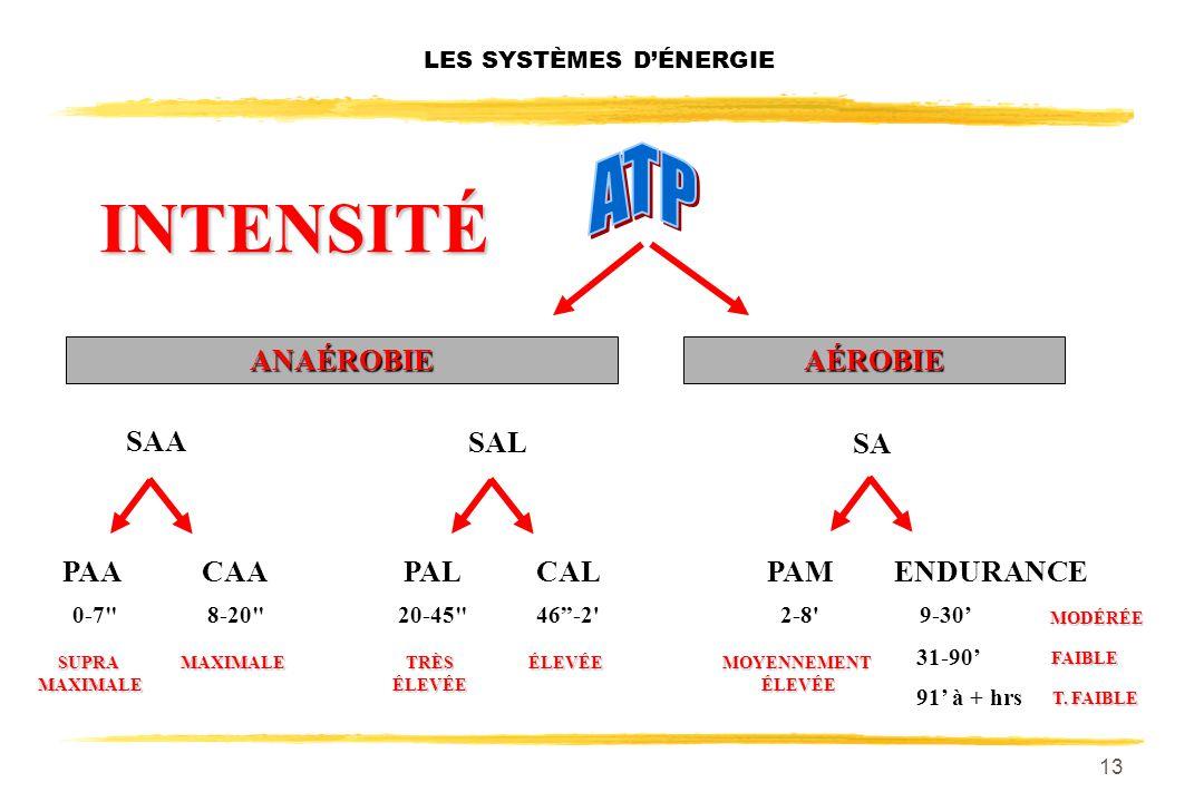 12 LES SYSTÈMES DÉNERGIE SA PAACAACALPALPAMENDURANCE ANAÉROBIEAÉROBIE 0-7