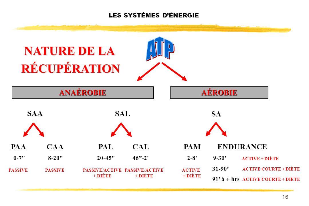 15 LES SYSTÈMES DÉNERGIE SA PAACAACALPALPAMENDURANCE ANAÉROBIEAÉROBIE 0-7