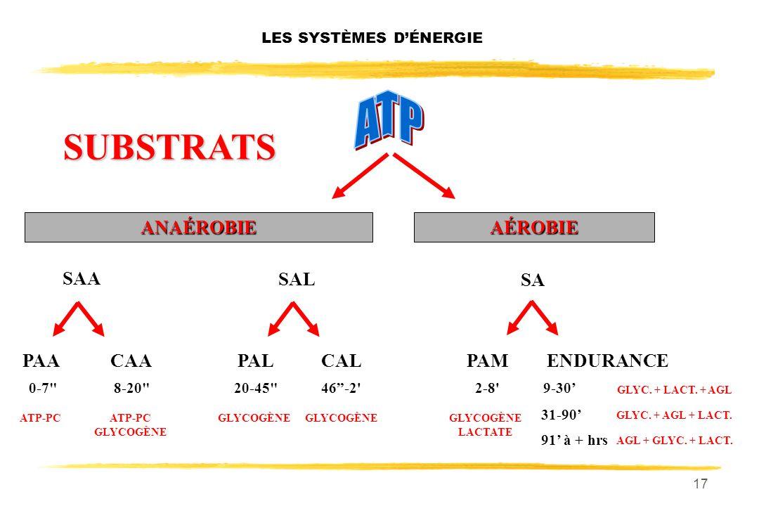 16 LES SYSTÈMES DÉNERGIE SA PAACAACALPALPAMENDURANCE ANAÉROBIEAÉROBIE 0-7