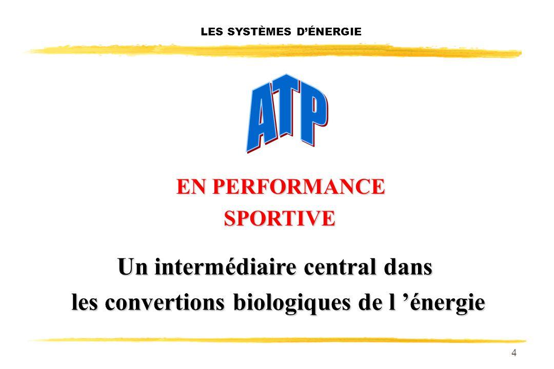 4 LES SYSTÈMES DÉNERGIE EN PERFORMANCE EN PERFORMANCESPORTIVE Un intermédiaire central dans les convertions biologiques de l énergie