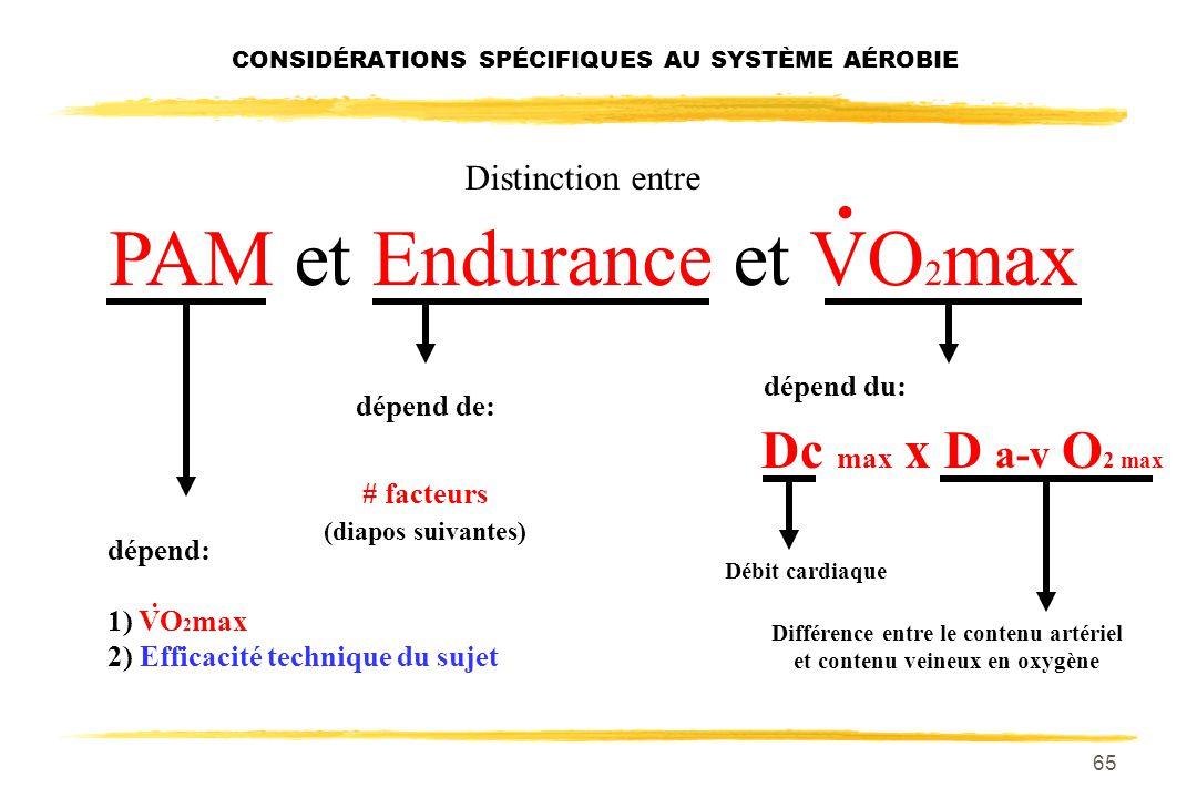 64 De quels facteurs dépendent PAM, Endurance et VO 2 max ?. CONSIDÉRATIONS SPÉCIFIQUES AU SYSTÈME AÉROBIE