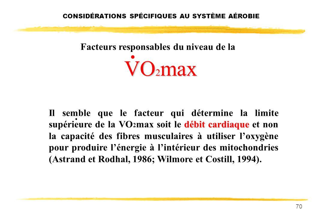 69 Facteurs responsables du niveau de la VO 2 max. La VO 2 max est donc déterminée à la fois par des: facteurs centraux: système cardio-pulmonaire. fa