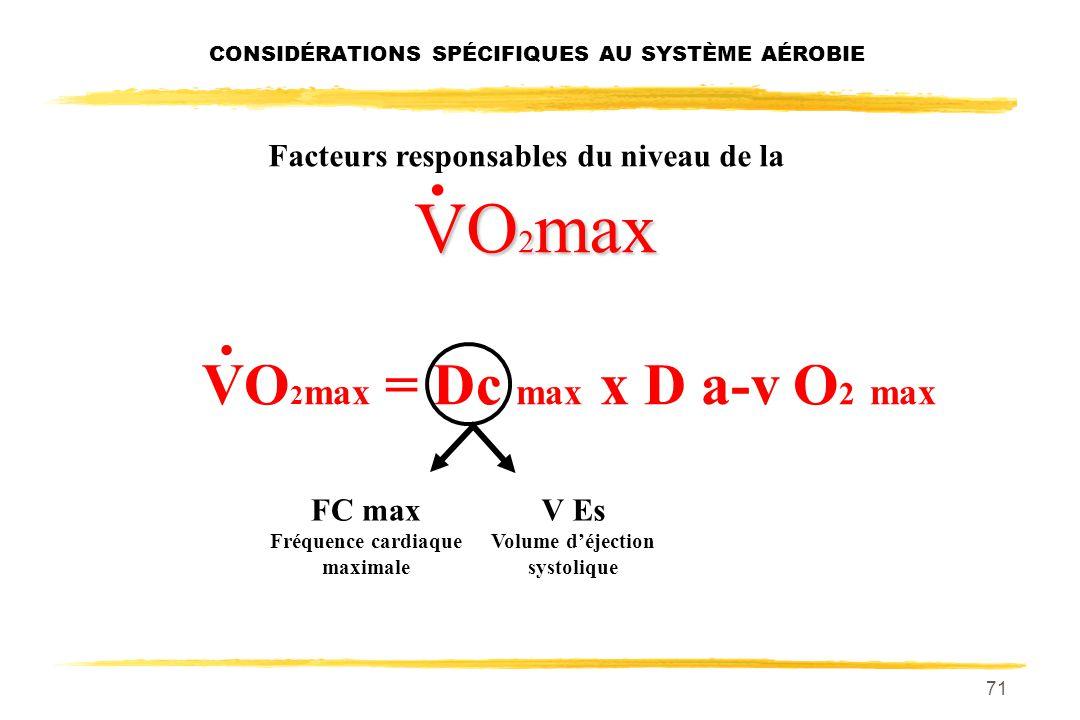 70 Facteurs responsables du niveau de la VO 2 max débit cardiaque Il semble que le facteur qui détermine la limite supérieure de la VO 2 max soit le d