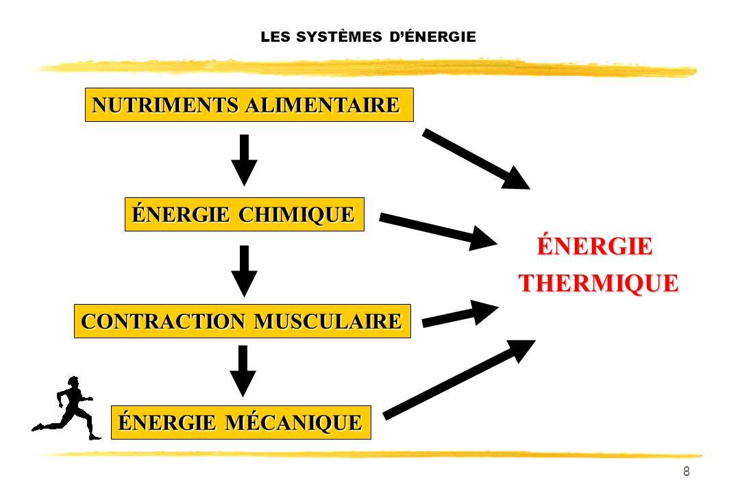 8 NUTRIMENTS ALIMENTAIRE LES SYSTÈMES DÉNERGIE ÉNERGIE CHIMIQUE CONTRACTION MUSCULAIRE ÉNERGIE MÉCANIQUE ÉNERGIETHERMIQUE