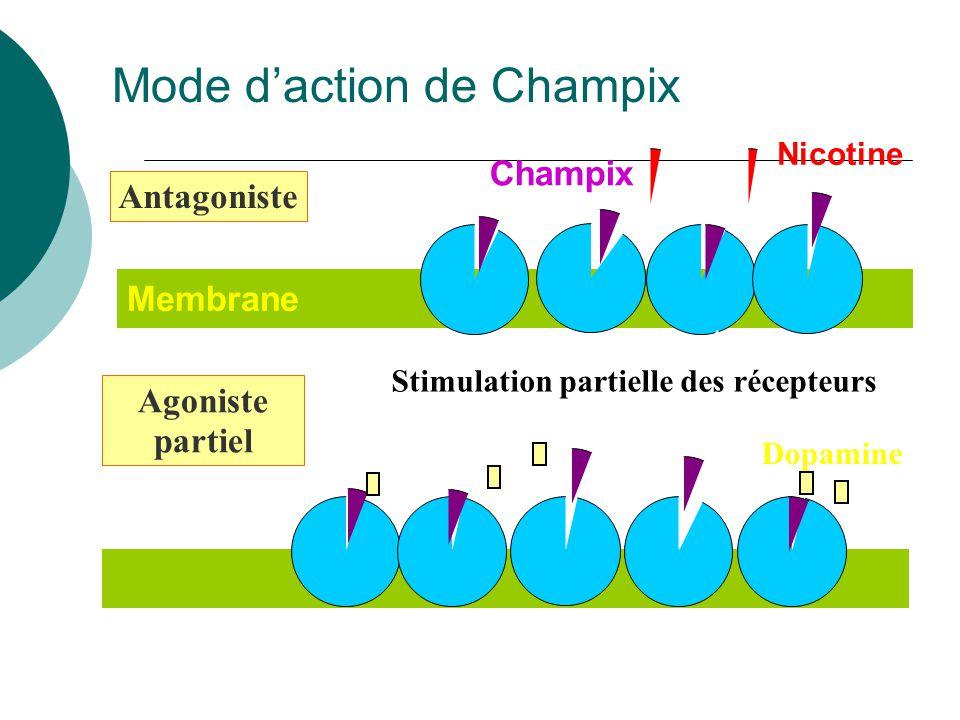 Membrane Antagoniste Agoniste partiel Champix Nicotine Dopamine Stimulation partielle des récepteurs Récepteurs 4 2 Mode daction de Champix