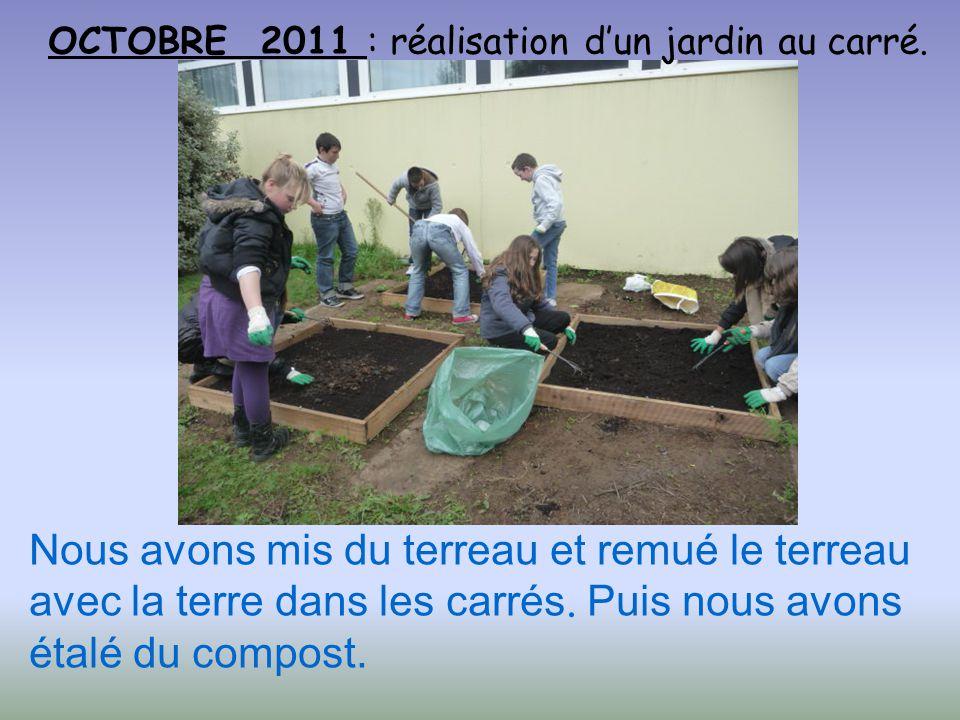OCTOBRE 2011 : réalisation dun jardin au carré. Nous avons mis du terreau et remué le terreau avec la terre dans les carrés. Puis nous avons étalé du