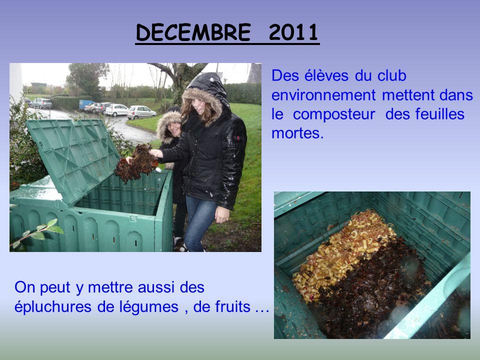 Des élèves du club environnement mettent dans le composteur des feuilles mortes. DECEMBRE 2011 On peut y mettre aussi des épluchures de légumes, de fr