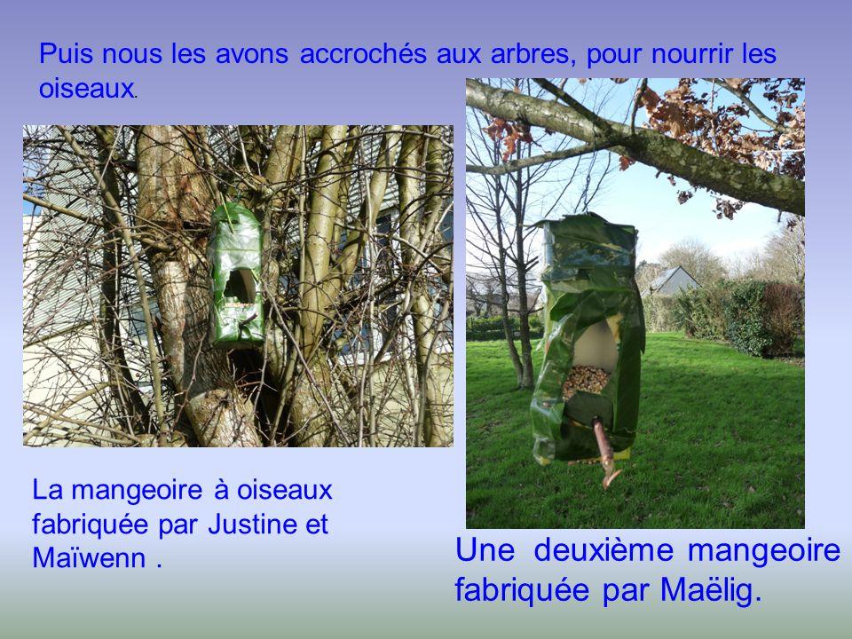 Puis nous les avons accrochés aux arbres, pour nourrir les oiseaux. La mangeoire à oiseaux fabriquée par Justine et Maïwenn. Une deuxième mangeoire fa