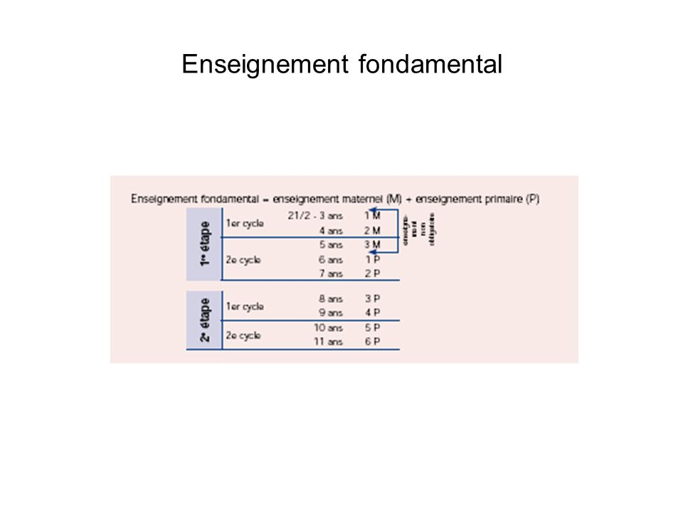 Enseignement fondamental