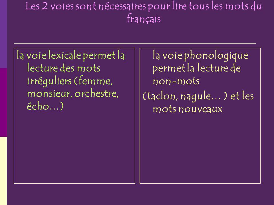 Les 2 voies sont nécessaires pour lire tous les mots du français la voie lexicale permet la lecture des mots irréguliers (femme, monsieur, orchestre, écho…) la voie phonologique permet la lecture de non-mots (taclon, nagule… ) et les mots nouveaux