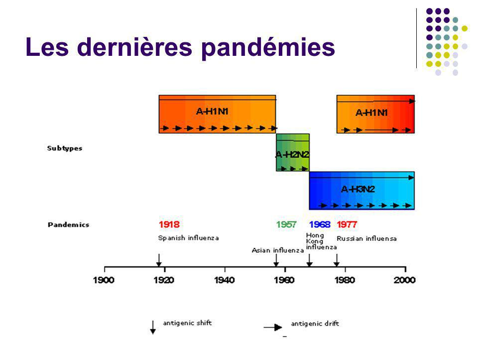 Pandémie (H1N1)v Différence importante avec le virus saisonnier Partage 72% à 73% de la séquence dacides aminés de la portion HA1 de lhémaglutinine des précédents virus H1N1 habituellement de 97% à 98% avec les virus des dernières saisons.