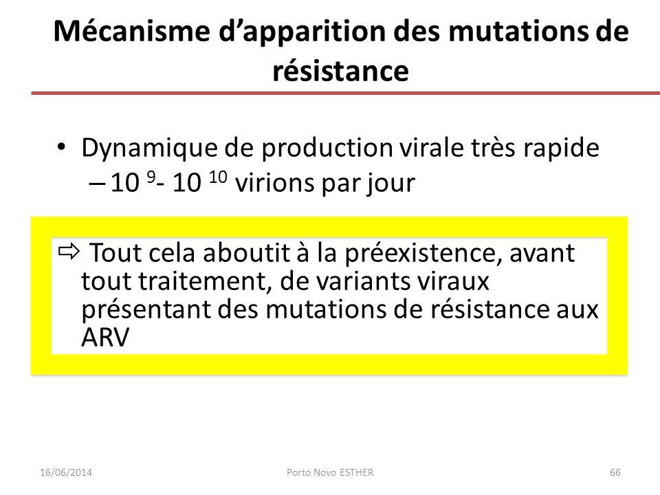 Mécanisme dapparition des mutations de résistance Dynamique de production virale très rapide – 10 9 - 10 10 virions par jour Tout cela aboutit à la pr