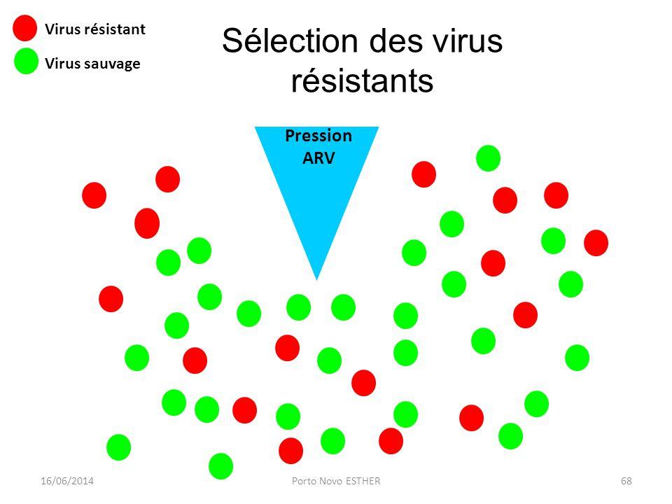 Pression ARV Virus résistant Virus sauvage Sélection des virus résistants 16/06/201468Porto Novo ESTHER