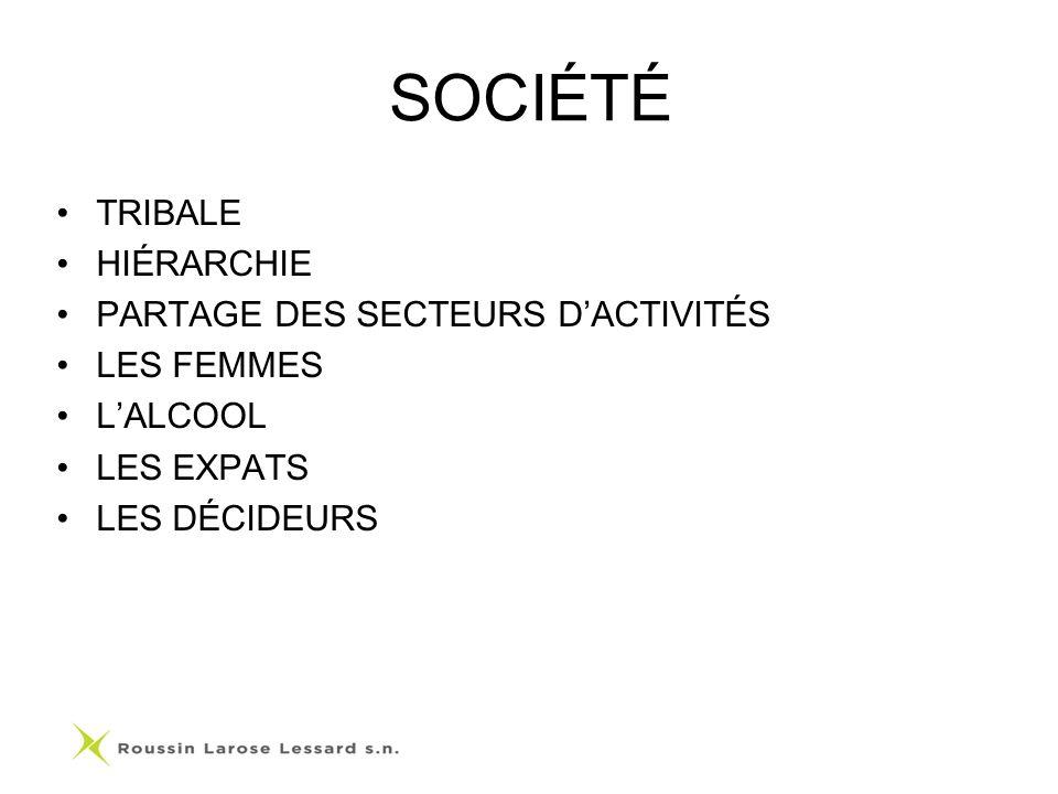 SOCIÉTÉ TRIBALE HIÉRARCHIE PARTAGE DES SECTEURS DACTIVITÉS LES FEMMES LALCOOL LES EXPATS LES DÉCIDEURS