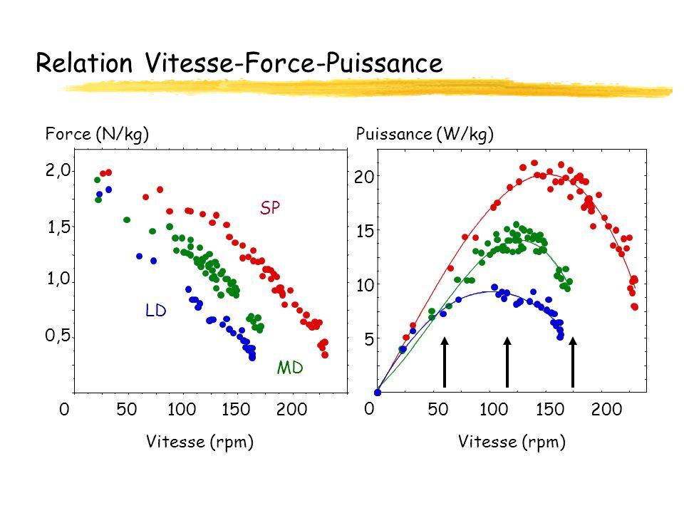 Relation Vitesse-Force-Puissance 0 5 10 15 20 50100150200 0,5 1,0 1,5 2,0 050100150200 Force (N/kg)Puissance (W/kg) Vitesse (rpm) SP LD MD
