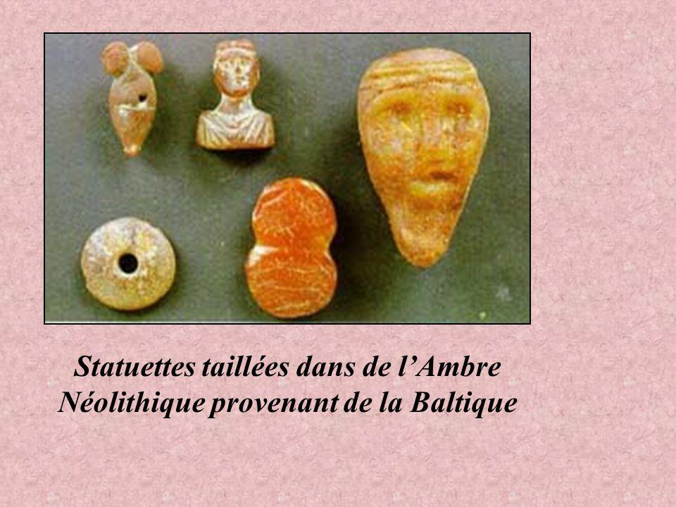 LAmbre, est utilisée depuis plusieurs milliers dannées. Il servit de monnaie déchange, contre du sel ou du silex aux hommes de la préhistoire. Certain