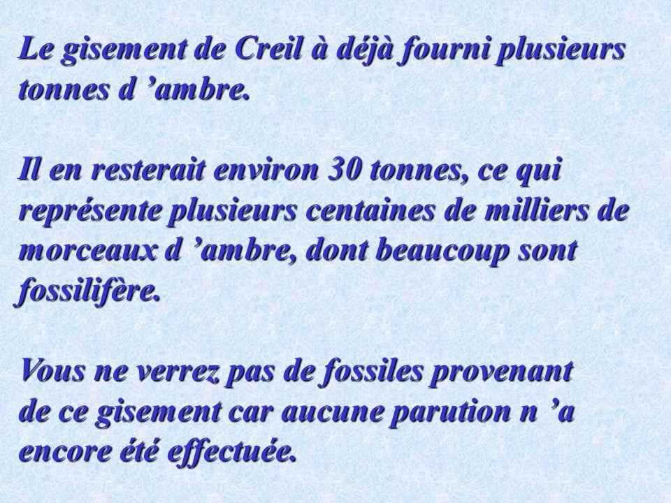 Comme celui découvert très récemment en France, à proximité de Creil dans lOise par un paléontologue amateur. Ce nouveau gisement est le premier fossi