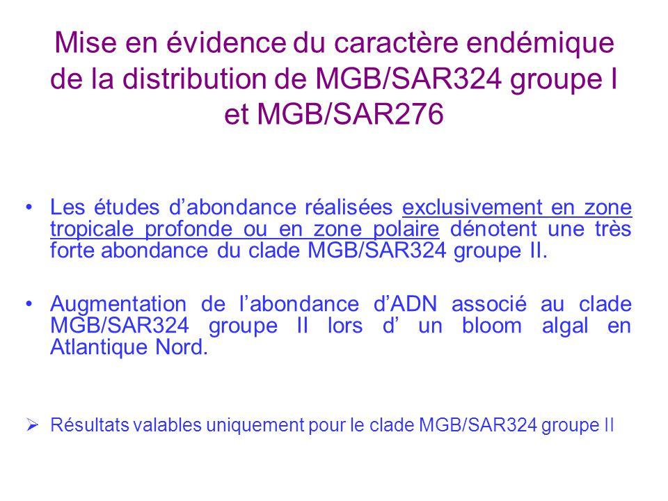 Mise en évidence du caractère endémique de la distribution de MGB/SAR324 groupe I et MGB/SAR276 Les études dabondance réalisées exclusivement en zone tropicale profonde ou en zone polaire dénotent une très forte abondance du clade MGB/SAR324 groupe II.