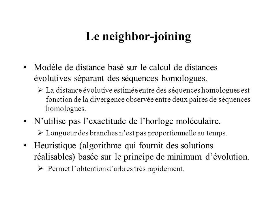 Le neighbor-joining Modèle de distance basé sur le calcul de distances évolutives séparant des séquences homologues.