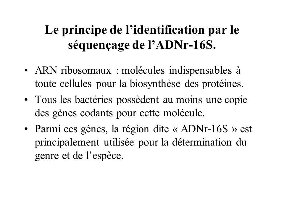 Le principe de lidentification par le séquençage de lADNr-16S.