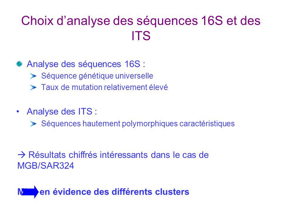Choix danalyse des séquences 16S et des ITS Analyse des séquences 16S : Séquence génétique universelle Taux de mutation relativement élevé Analyse des ITS : Séquences hautement polymorphiques caractéristiques Résultats chiffrés intéressants dans le cas de MGB/SAR324 Mise en évidence des différents clusters