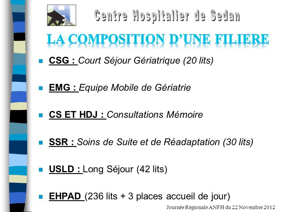 Journée Régionale ANFH du 22 Novembre 2012 n CSG : Court Séjour Gériatrique (20 lits) n EMG : Equipe Mobile de Gériatrie n CS ET HDJ : Consultations M