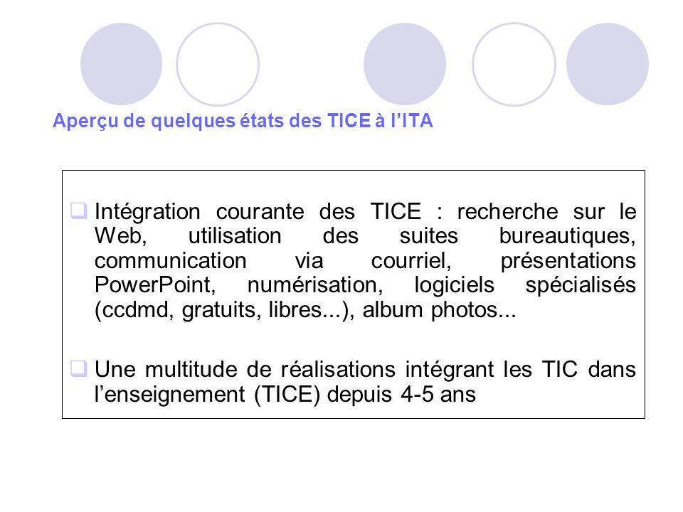Aperçu de quelques états des TICE à lITA Intégration courante des TICE : recherche sur le Web, utilisation des suites bureautiques, communication via