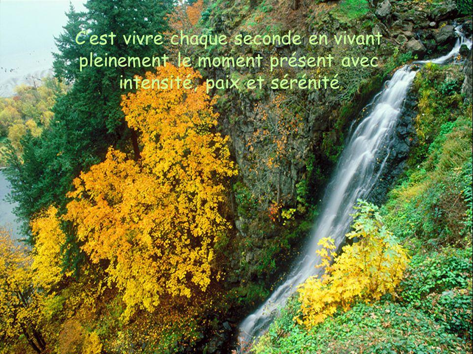 Cest vivre chaque seconde en vivant pleinement le moment présent avec intensité, paix et sérénité