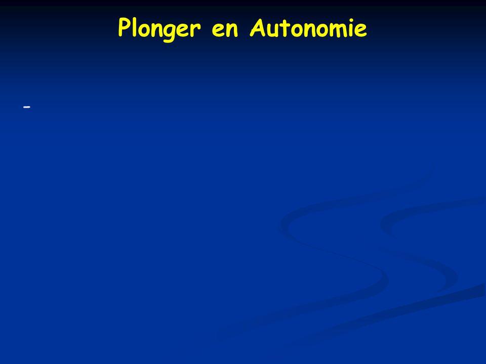 Plonger en Autonomie -