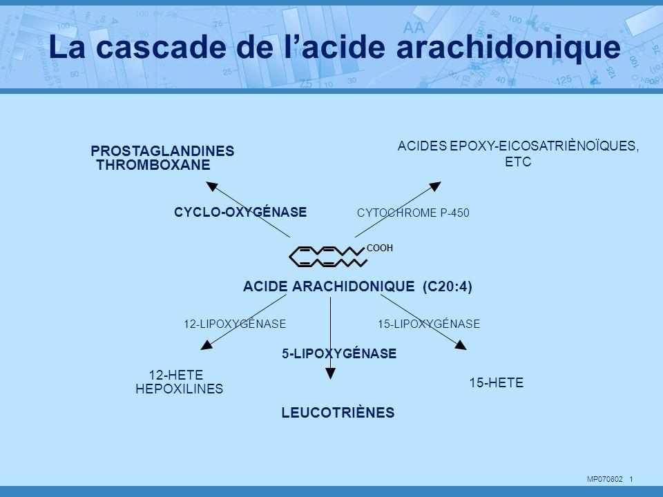 MP070802 2 COOH OOH O COOH OH COOH HO OH C 5 H 11 SCH 2 COOH CHCONHCH 2 COOH NHCOCH 2 CH 2 CHCOOH NH 2 LTA 4 LTC 4 ACIDE ARACHIDONIQUE (C20:4) 5-HpETE 5-LIPOXYGÉNASE GLUTATHION-S- TRANSFERASE LTB 4 La voie de la 5-Lipoxygenase LTA 4 HYDROLASE (H 2 0)