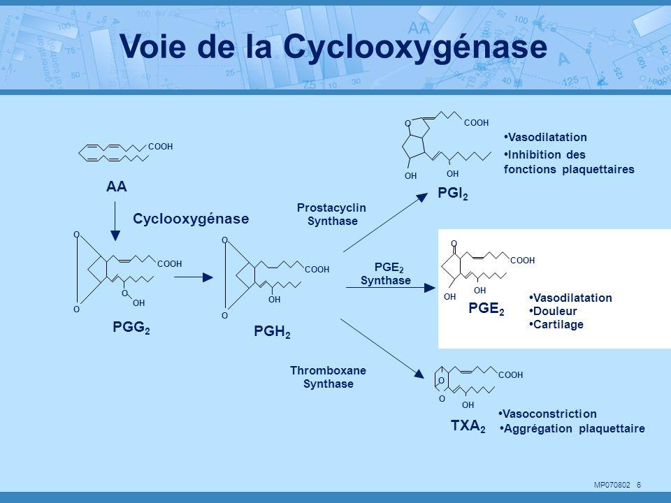 MP070802 6 COOH O O OH PGH 2 PGE 2 COOH OH O PGI 2 COOH OH O COOH OH O O TXA 2 Cyclooxygénase COOH AA PGG 2 COOH O O O OH Thromboxane Synthase Prostac