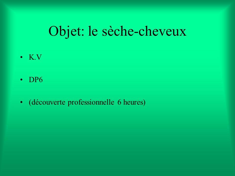 Objet: le sèche-cheveux K.V DP6 (découverte professionnelle 6 heures)