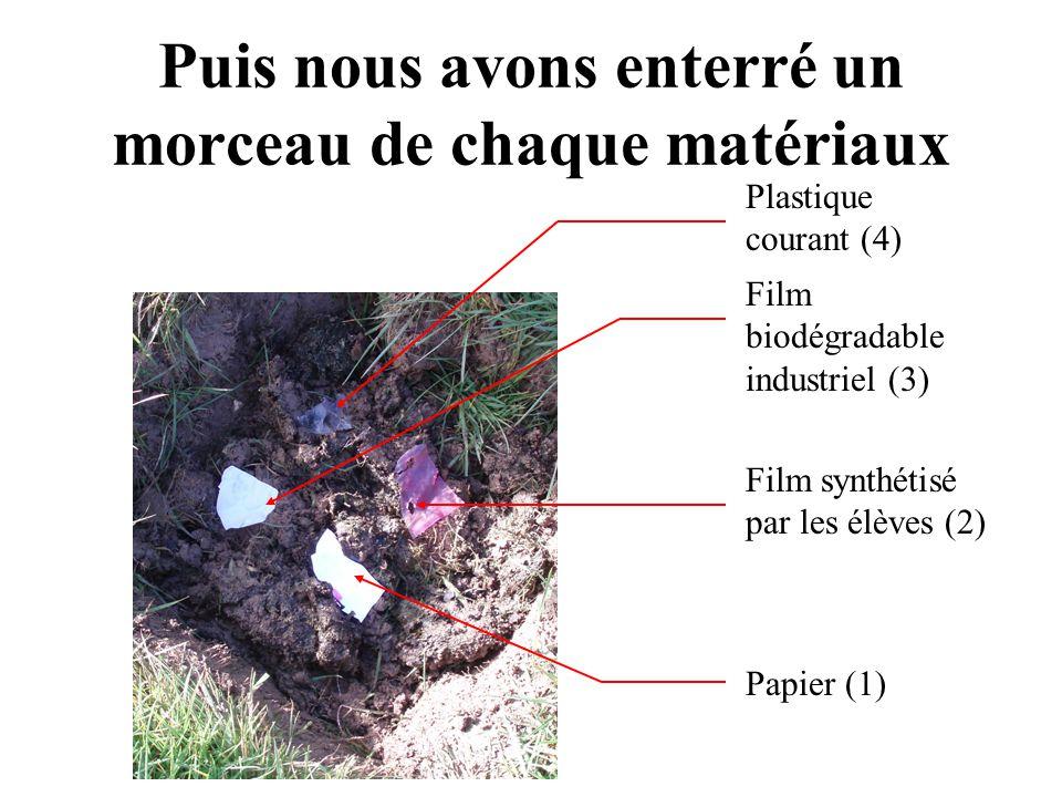 Plastique courant (4) Film synthétisé par les élèves (2) Film biodégradable industriel (3) Papier (1) Puis nous avons enterré un morceau de chaque mat
