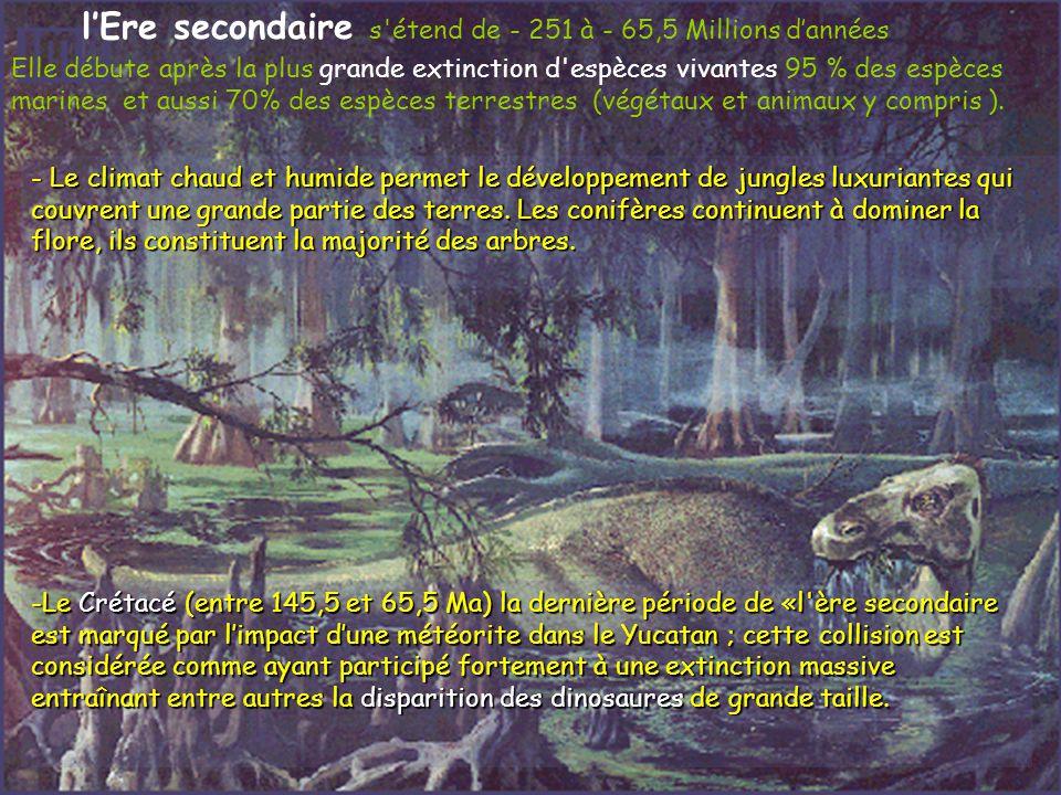 lEre secondaire s'étend de - 251 à - 65,5 Millions dannées Elle débute après la plus grande extinction d'espèces vivantes 95 % des espèces marines et