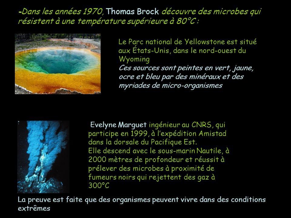 - -Dans les années 1970, Thomas Brock découvre des microbes qui résistent à une température supérieure à 80°C : Le Parc national de Yellowstone est si
