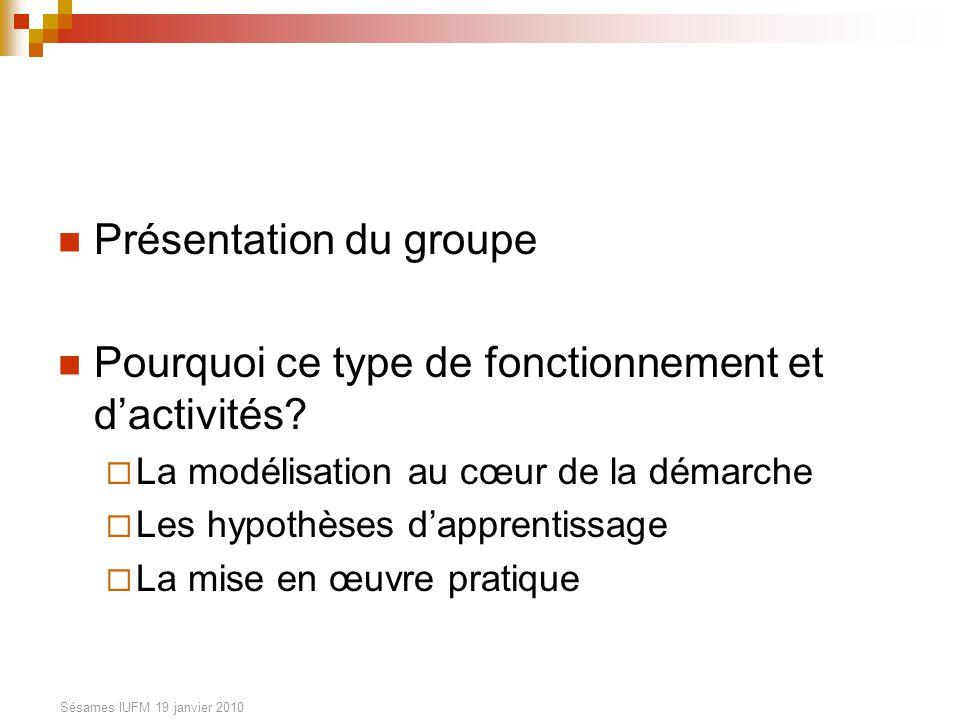 Sésames IUFM 19 janvier 2010 Présentation du groupe Pourquoi ce type de fonctionnement et dactivités.