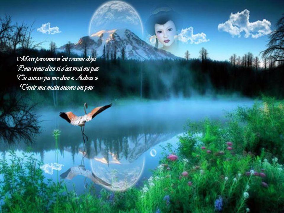Je tai vu me quitter des yeux Pour dautres ailleurs, vers dautres cieux On y parle dendroits merveilleux Merveilleux