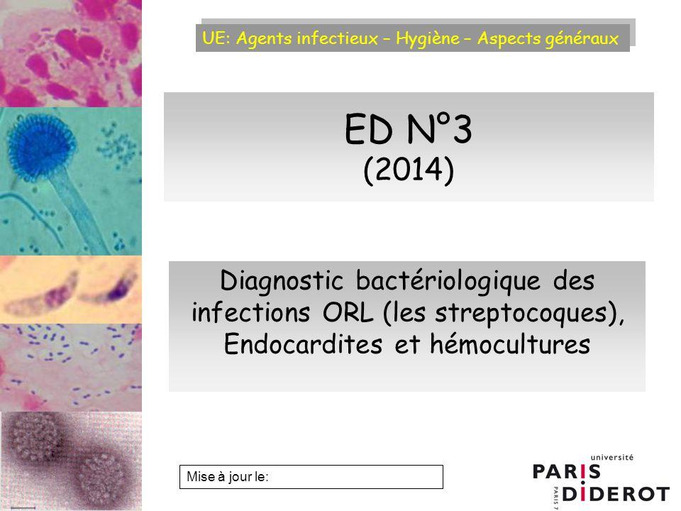 UE: Agents infectieux – Hygiène – Aspects généraux Examen bactériologique dun écouvillon damygdale Cocci Gram + Culture sur gélose au sang à 37°C Angine érythémateuse Angine de Vincent E.D.