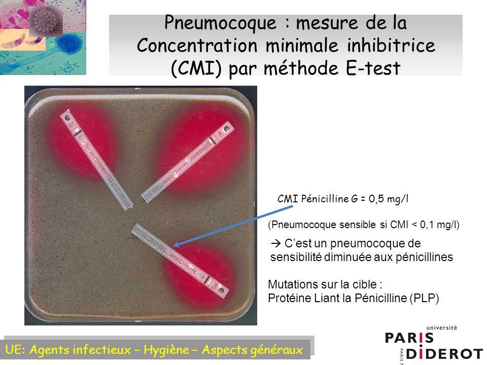 UE: Agents infectieux – Hygiène – Aspects généraux Pneumocoque : mesure de la Concentration minimale inhibitrice (CMI) par méthode E-test CMI Pénicilline G = 0,5 mg/l Cest un pneumocoque de sensibilité diminuée aux pénicillines Mutations sur la cible : Protéine Liant la Pénicilline (PLP) (Pneumocoque sensible si CMI < 0,1 mg/l)