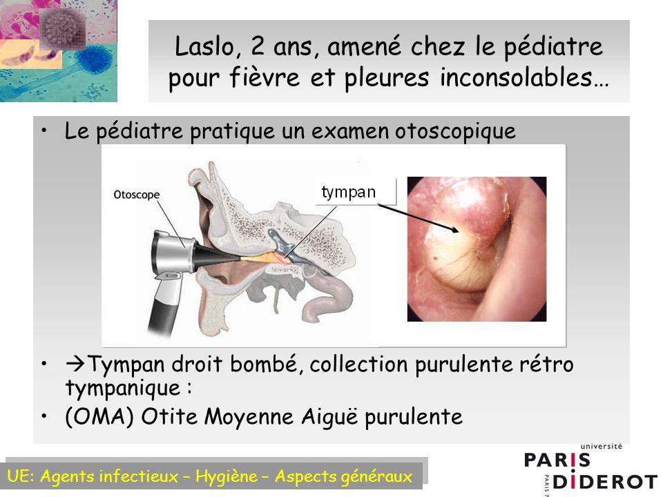 UE: Agents infectieux – Hygiène – Aspects généraux Epidémiologie bactérienne des Otites Moyennes Aiguës (OMA) Haemophilus influenzae :~40% Streptococcus pneumoniae : ~ 30% = pneumocoque (pas de pénicillinase) Moraxella (Branhamella) catarrhalis : ~ 7% (90% pénicillinase +) Bacille Gram – (ou coccobacille) Cocci Gram – Cocci Gram + (diplocoque ou courtes chaînettes) Infection virale Inflammation de loreille moyenne aspiration de germes de la flore oropharyngée Surinfection avec bactéries virulentes (~2/3 cas) (10-30% pénicillinase +) Plus rarement : Streptocoque du groupe A, Staphylococcus aureus…