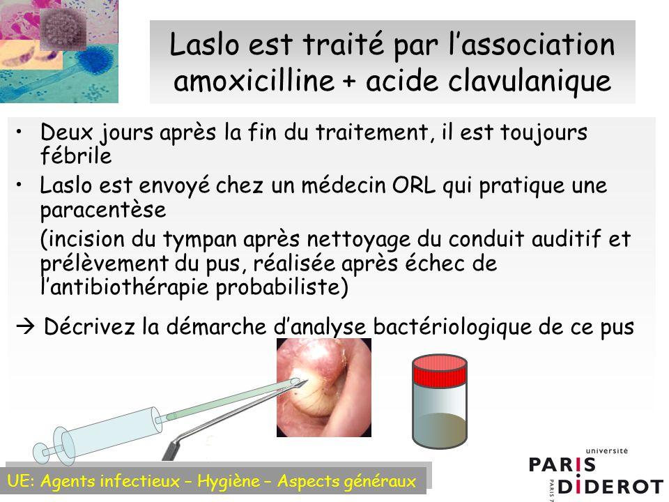 UE: Agents infectieux – Hygiène – Aspects généraux Origine des infections bactériémiques A partir dun foyer infectieux : Recherche de la porte dentrée (bactérie concernée) +++ : Urinaire : pyélonéphrite, prostatite à E.