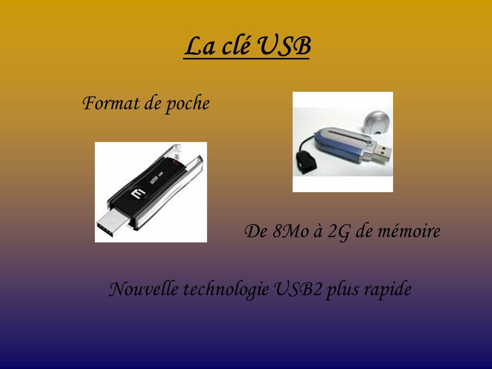 La clé USB Format de poche De 8Mo à 2G de mémoire Nouvelle technologie USB2 plus rapide